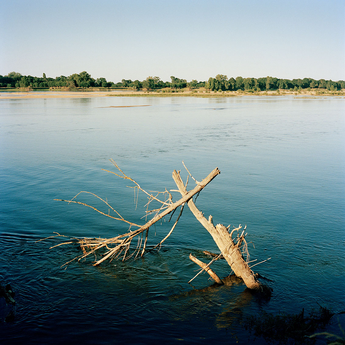 La Loire - Maine et Loire
