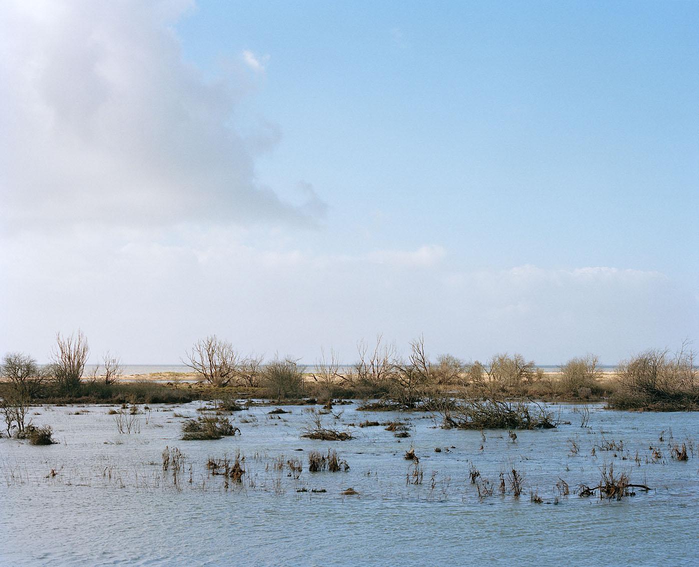 La Belle Henriette - Réserve Naturelle Nationale - La Faute sur Mer
