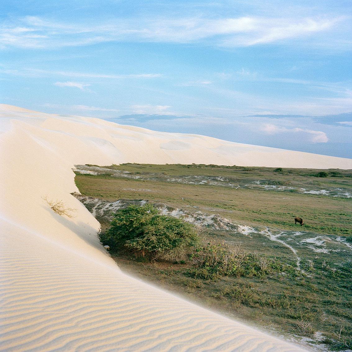 Parc national de Jericoacoara.