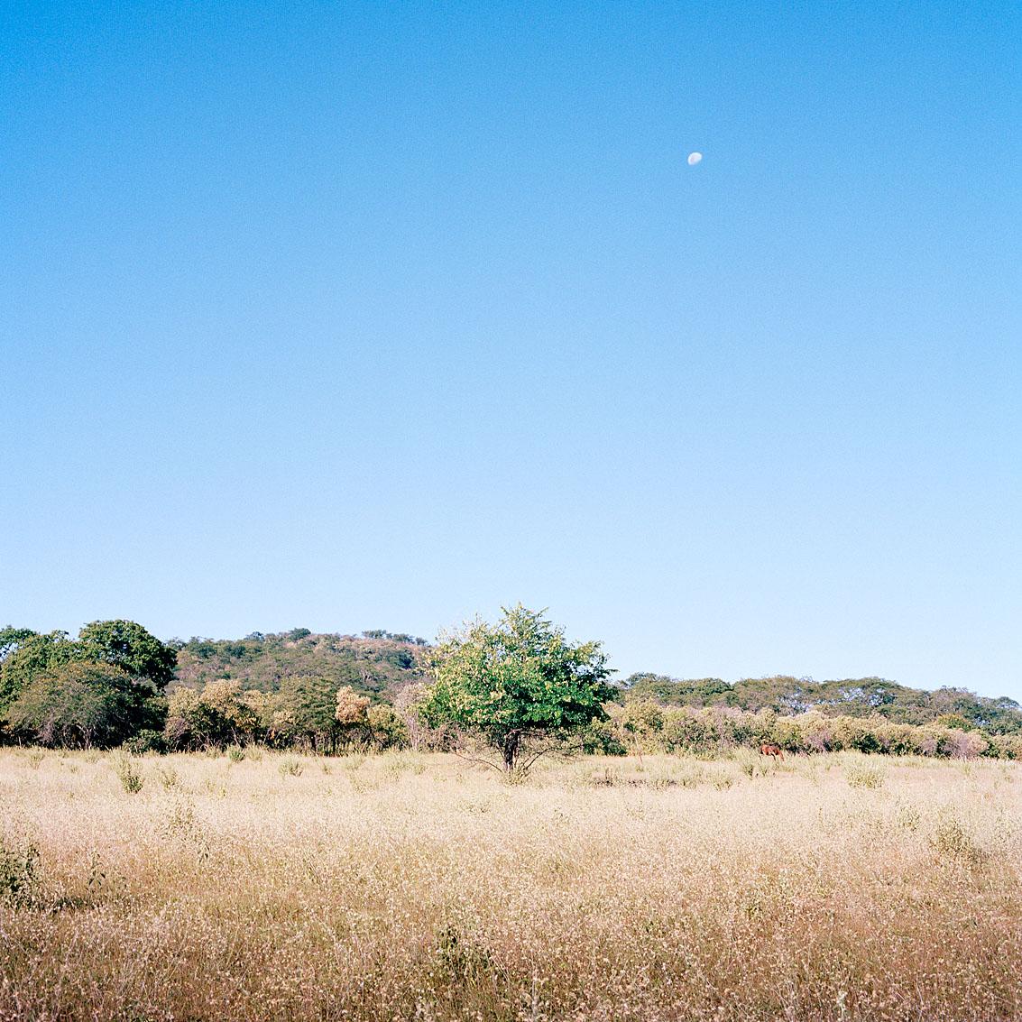 Région de Taua.