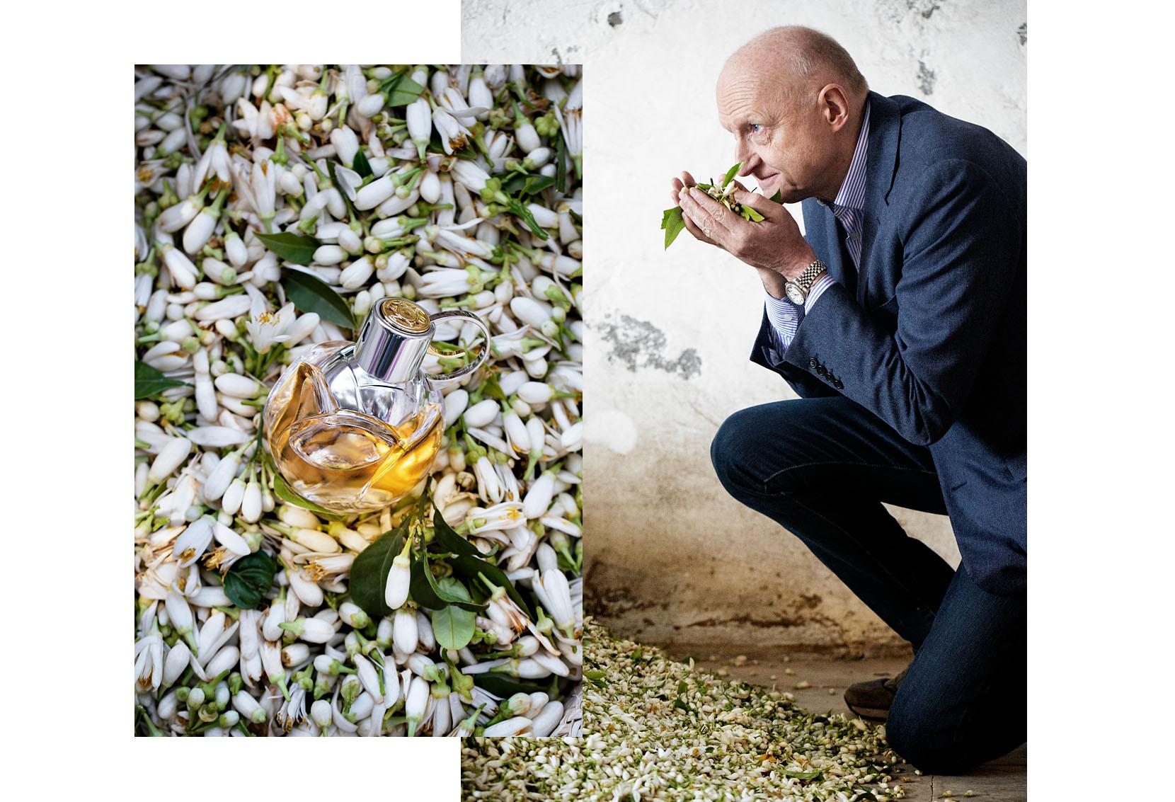 Wanted Girl d'Azzaro et Dominique Ropion, maître parfumeur, chez un collecteur de fleurs d'oranger à Nabeul.